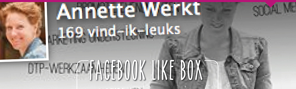 Facebook Like Box omzetten