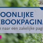Een persoonlijke Facebookpagina omzetten naar een zakelijke pagina